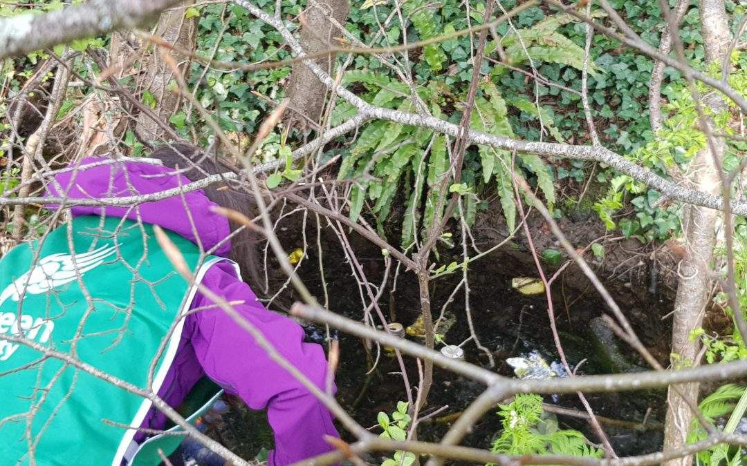 Celbridge Waterways Cleanup