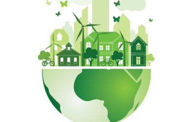 Providing reports of the Environmental Performance Assessment